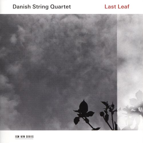 the contemporary classical music community danish string quartet last leaf